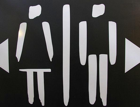 Wc Toilet Lavatory Loo Man Gentleman Woman Women V
