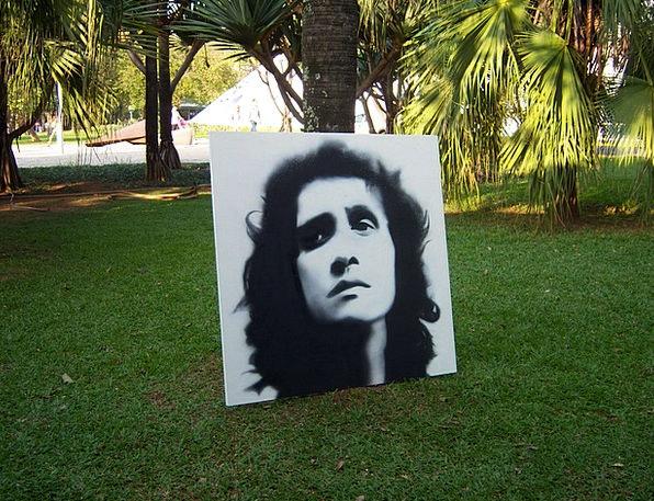Roberto Carlos Lawn Grass Ibirapuera