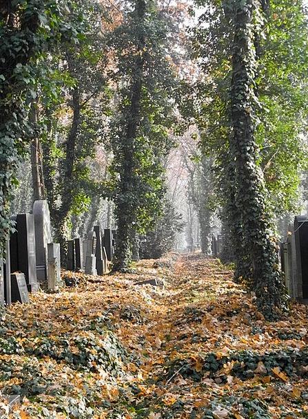 Cemetery Graveyard Serious Tomb Catacomb Grave Gra