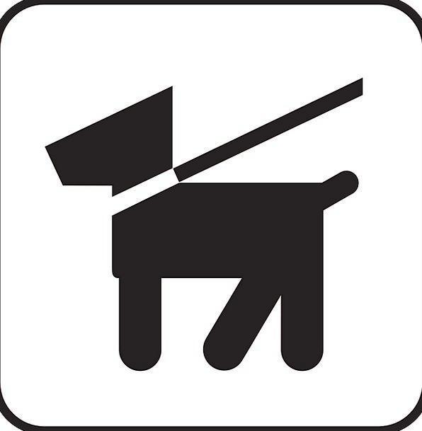 Dog Canine Lead Clue Dog Leash Leash Symbol Sign F