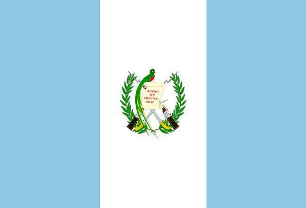 Guatemala Standard National Flag Flag Nationality