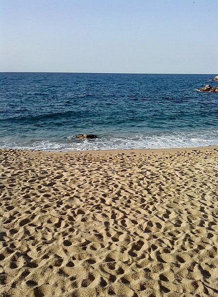Sea Marine Vacation Shingle Travel Beach Seashore