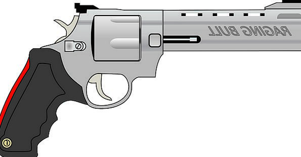 Revolver Fire Passion Pistol Arms Weapons Gun Bull