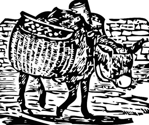 Donkey Loud Baskets Bags Carrying Basket Load Weig
