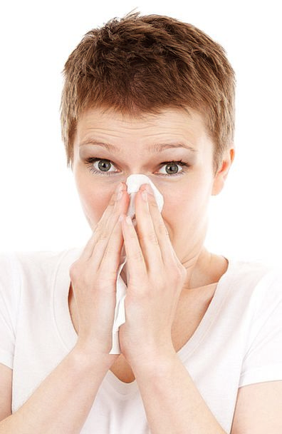 Allergy Aversion Emotionless Disease Cold Isolated