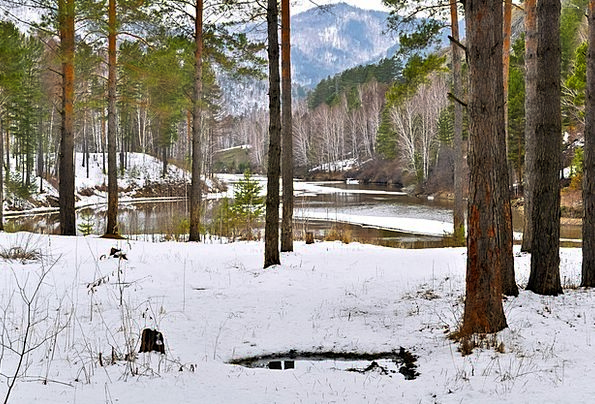 Forest Woodland Landscapes Snowflake Nature River