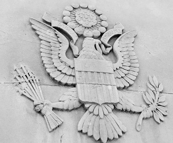 America Eagle American Symbolic Great Countless Si