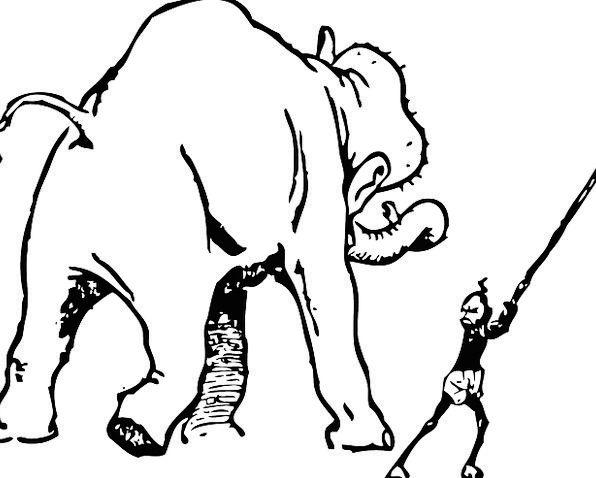 Elephant Monster Coach Teach Impart Trainer Train