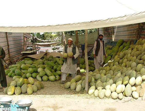 Melons Kabul Market Stall Fruits Ovaries Firm Full