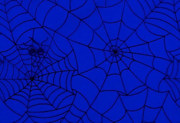 Spiders Textures Backgrounds Cobweb Spiderweb Web