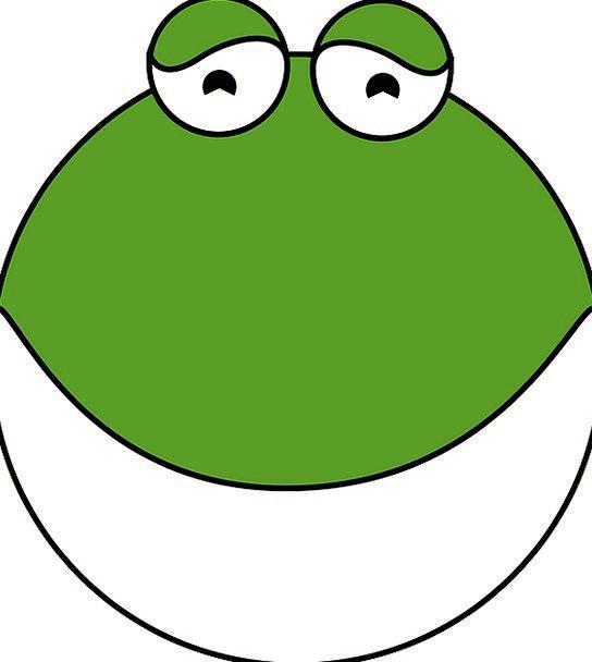 Frog Physical Amphibian Animal Exotic Pet Tropical