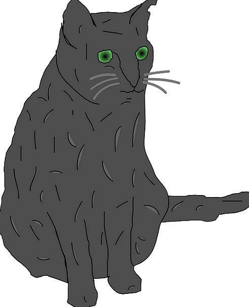Cat Old Green Eyed Grey Big Eyes Free Vector Graph