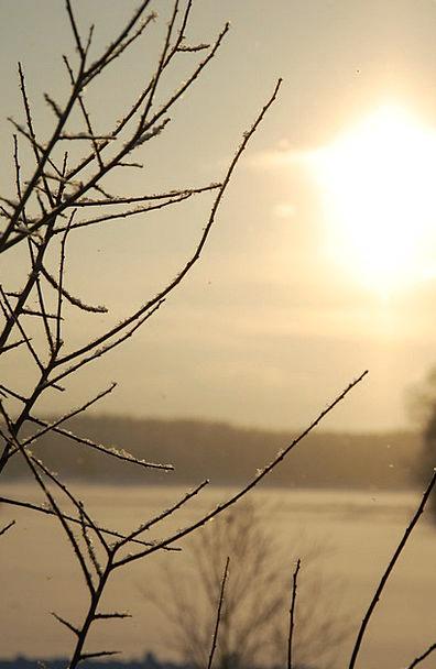 Sunshine Sunlight Snow-white Shining Outstanding S