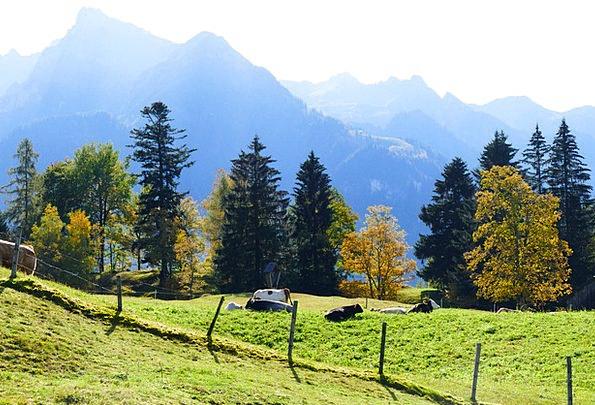 Autumn Mood Landscapes Crags Nature Autumn Fall Mo