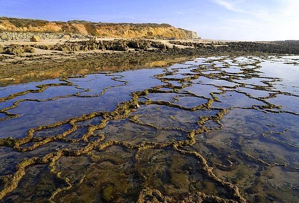 Portugal Coast Shore Atlantic Sea Marine Rocky Sto
