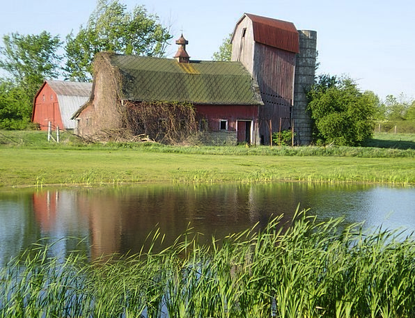 Barn Outbuilding Aquatic Old Water Agricu