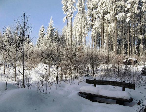 Winter Season Landscapes Snowflake Nature Black Fo
