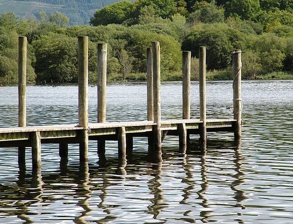 Dock Berth Pilings Supports Pier Lake Freshwater W