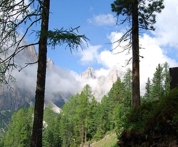 Stem Stalk Landscapes Nature Mountain Crag Dolomit