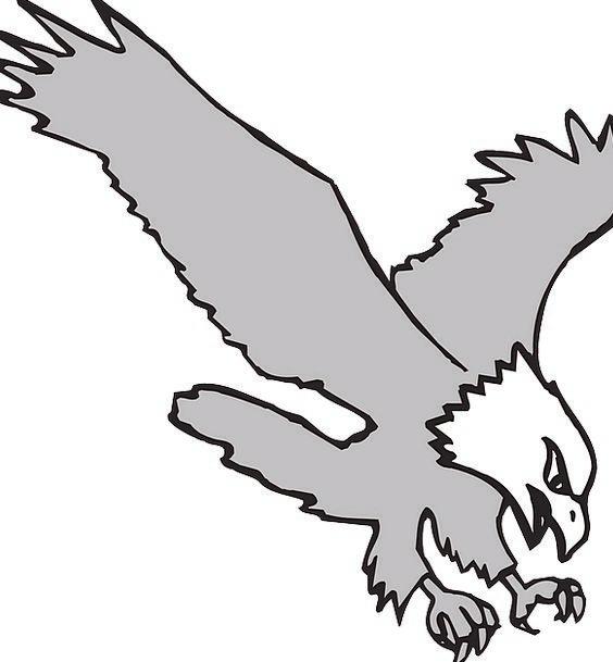 Eagle Fowl Wings Annexes Bird Hunting Shooting Rap