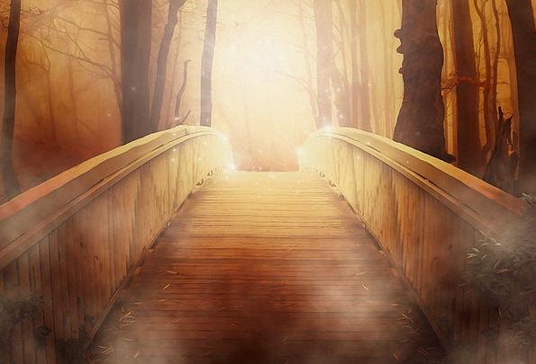 Bridge Bond Landscapes Excellent Nature Light Brig
