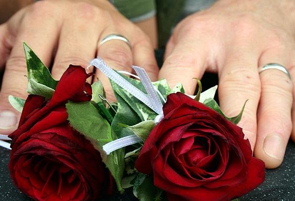 Wedding Designs Rings Jewels Roses Bridal Hands Po