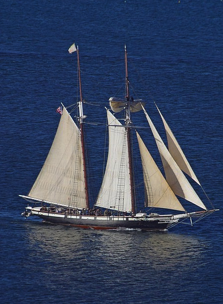 Sailing Vessel Vacation Navigate Travel Sea Marine