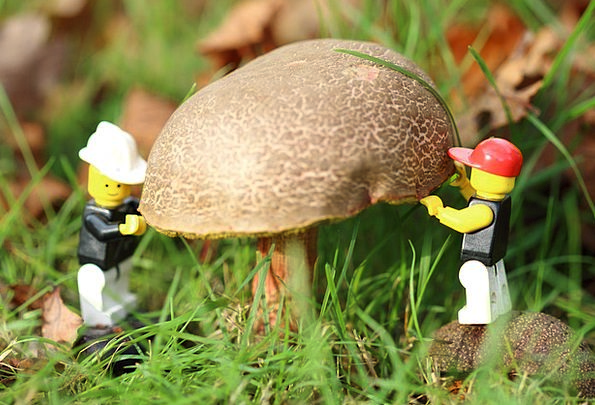 Playmobil Men Workers Labors Males Gardener Hortic