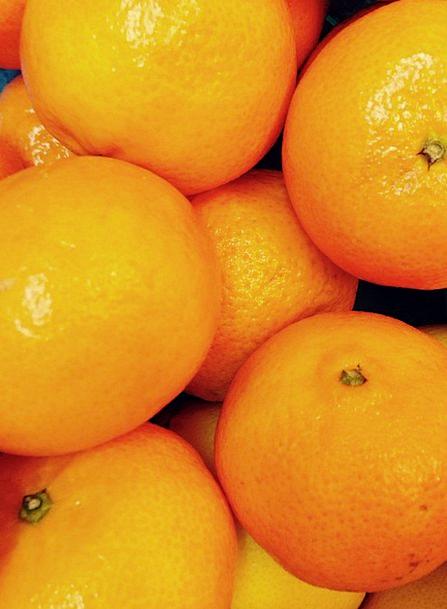 Mandarin Bureaucrat Drink Ovary Food Citrus Fruit
