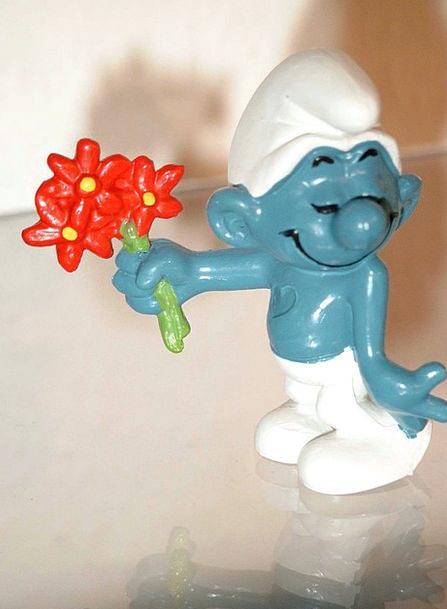 Smurf Bouquet Bunch Fig Blue Azure Red Flower Blue