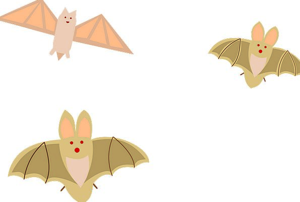 Bats Rackets Hovering Cartoon Animation Flying Col