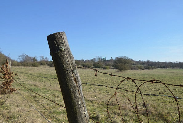 Fence Barrier Meadow Stainless Pasture Barbed Wire