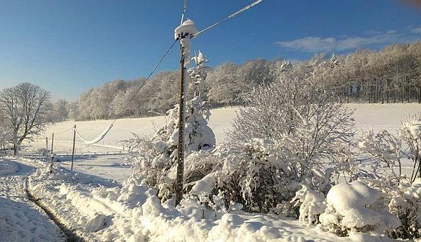 Snow Snowflake Landscapes Season Nature Winter Mag