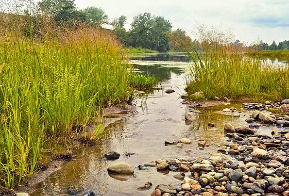 Stream Watercourse Landscapes Straw-hat Nature Gra