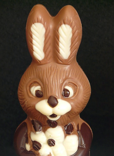 Easter Bunny Chocolate Easter Brown Man Hare Gentl