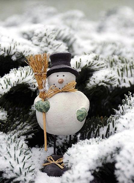 Snow Man Snow Snowflake Fig Deco Winter Wintry Sea