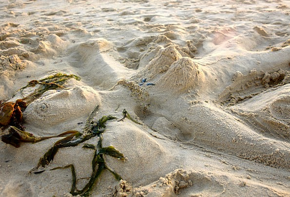 Beach Seashore Vacation Shingle Travel Sand Sculpt