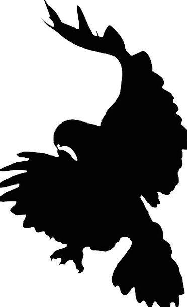 Eagle Fowl Silhouette Outline Bird Falcon Attack W