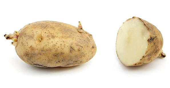 Potato Vegetable Drink Food Russet Burbank Potato