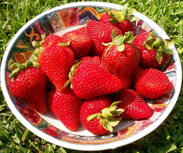 Strawberries Season Period Berries Ingredient Swee