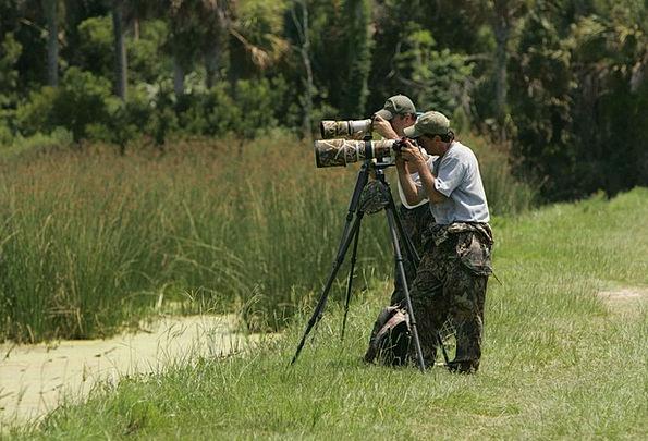 Countryside Scenery Photographers Paparazzi Camera