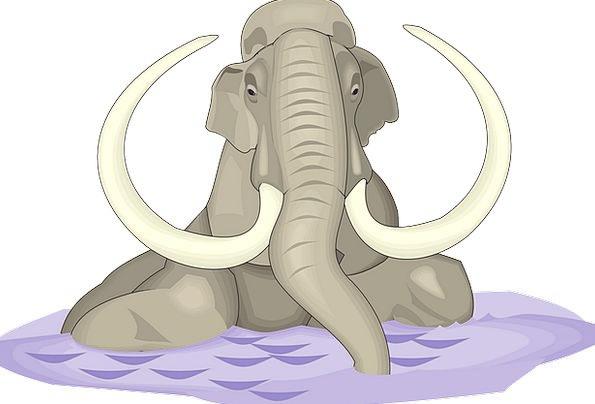 Water Aquatic Monster Animal Physical Elephant Anc