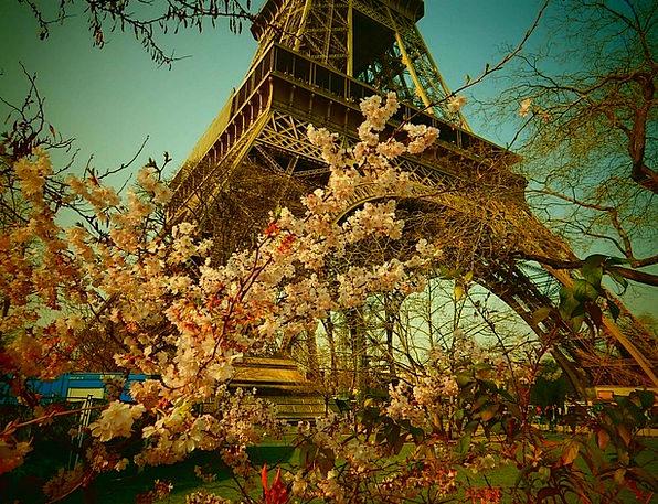Eiffel Tower Buildings Architecture France Paris S