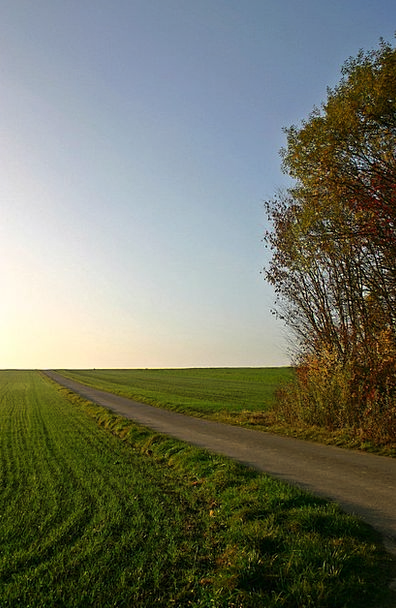 Field Arena Landscapes Path Nature Away Absent Lan
