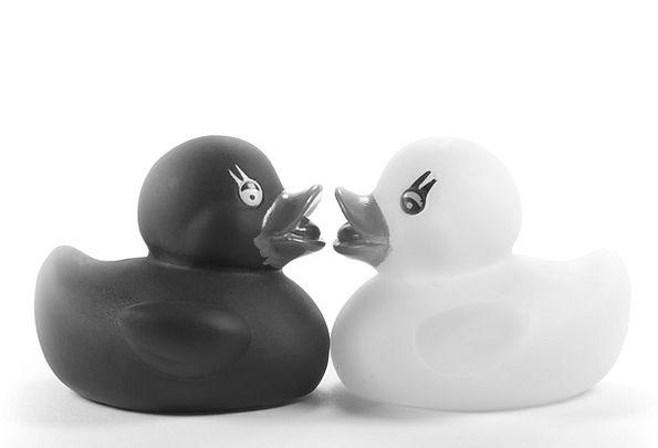 Ducks Dears Toys Dolls Rubber Ducks Squeak Duck Ro