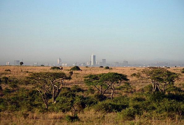 Nairobi Africa Cityscape Kenya Savanna Grassland
