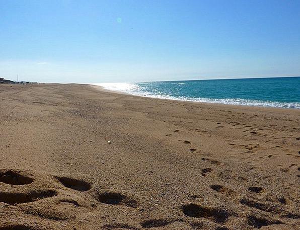 Beach Seashore Vacation Marine Travel Wave Upsurge