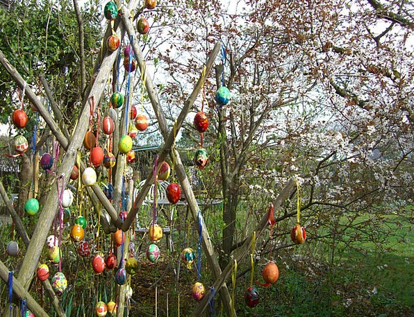 Easter Tree Easter Easter Eggs Colored Colorful In