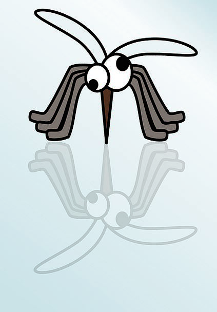 Mosquito Leech Bug Germ Insect Free Vector Graphic