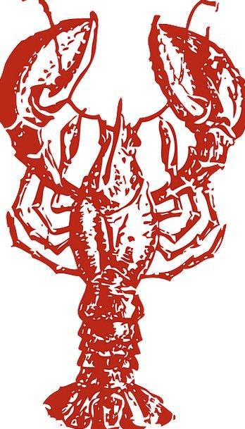 Lobster Drink Food Sea Marine Crustacean Food Nour